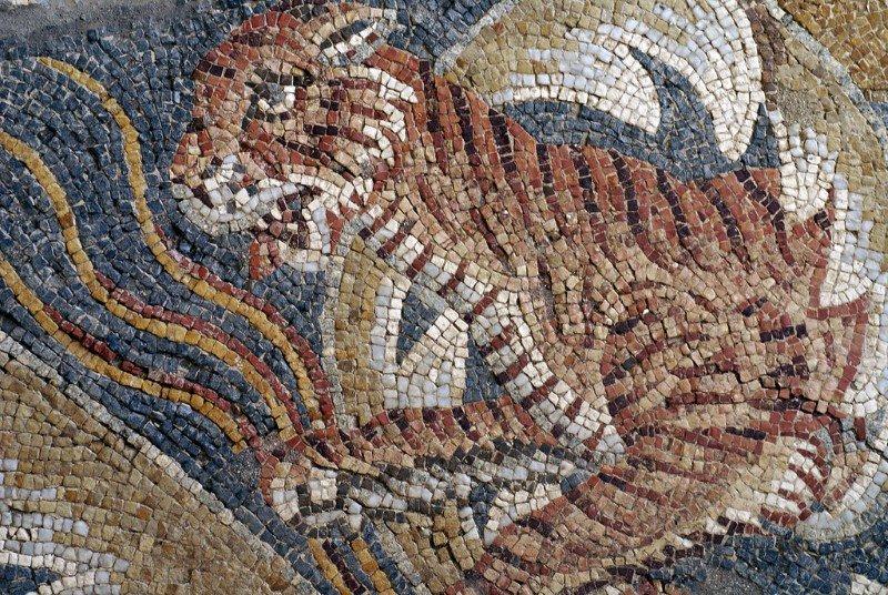 Mosaici della Villa del Tellaro
